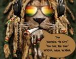 ds_reggae_8-3.jpg